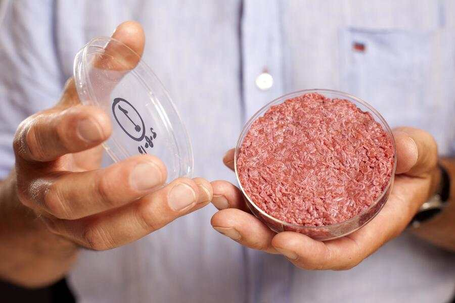 EDITORIAL USE ONLY. A burger made from Cultured Beef, which has been developed by Professor Mark Post of Maastricht University in the Netherlands.  PRESS ASSOCIATION Photo. Issue date: Monday August 5, 2013. Cultured Beef could help solve the coming food crisis and combat climate change. Commercial production of Cultured Beef could begin within ten to 20 years. Photo credit should read: David Parry/PA