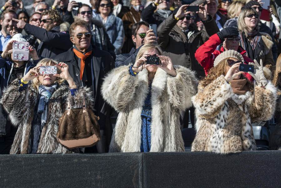 Visitors wearing fur coats take pictures, pictured at the White Turf in St. Moritz, Switzerland, on February 23, 2014. At the White Turf, among other horse races, there is also a skijoring race. (KEYSTONE/Christian Beutler)Zuschauerinnen im Pelzmantel sind am Fotografieren, aufgenommen am White Turf in St. Moritz am Sonntag 23. Februar 2014. Am White Turf findet unter anderem das Skijoering-Rennen statt. (KEYSTONE/Christian Beutler)